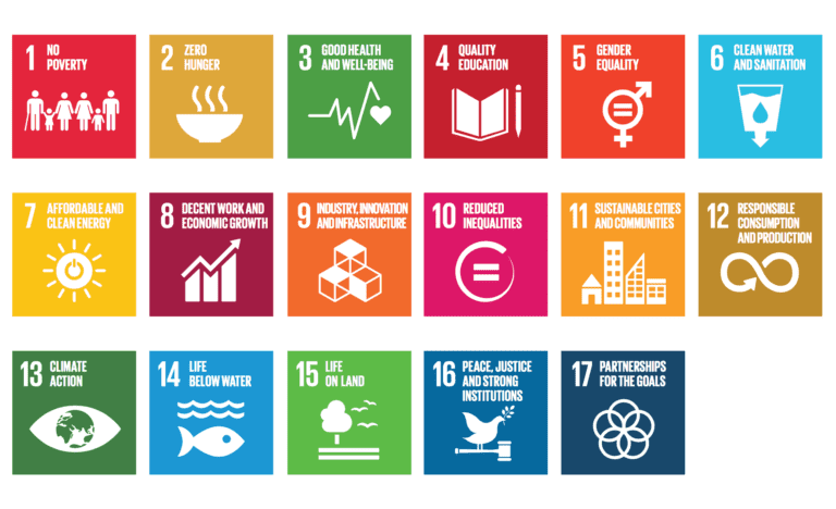 About the SDG's: Sustainable Development Goal 3